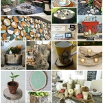 18 Great Ways to Upcycle Tree Stumps