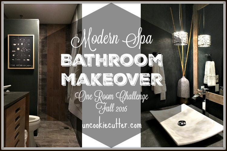 Bathroom Makeover Final Reveal!  ORC – Fall 2016