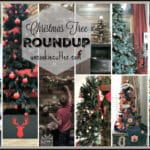 My Christmas Tree Roundup – I have Too Many Trees!