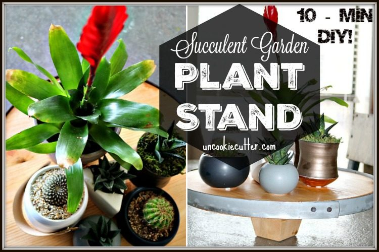 Succulent Garden Plant Stand - March 10 Min DIY Upcycle - Uncookiecutter.com